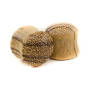 Holz Plug Südstern Zebrano - van branch - Paar