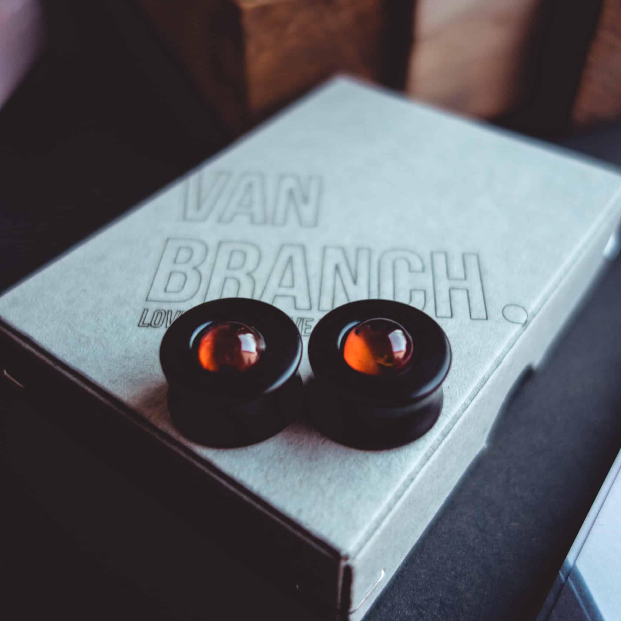 Handgefertigte 18mm Ohr Plugs aus Ebenholz mit Bernstein Edelstein